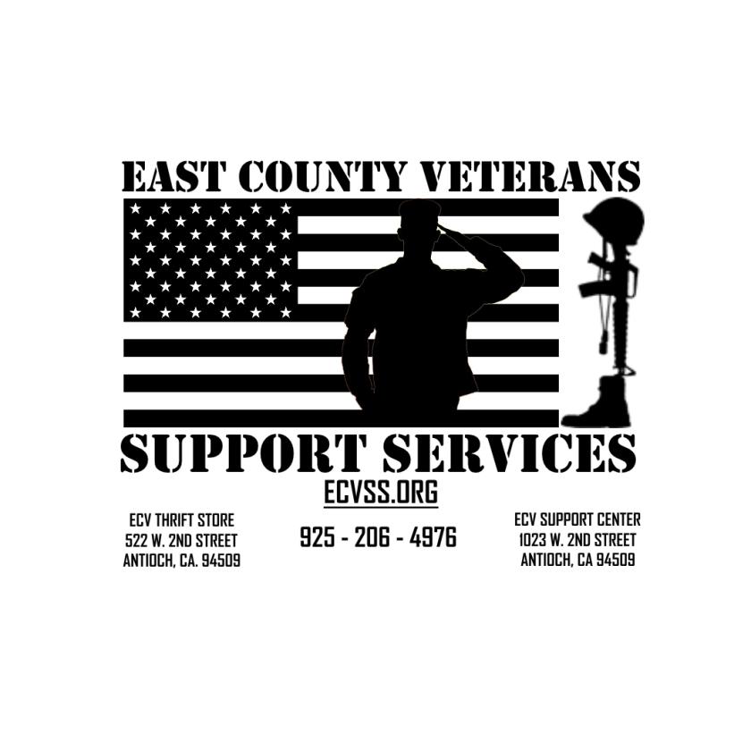 ecvss-logo-try12-info-jpg